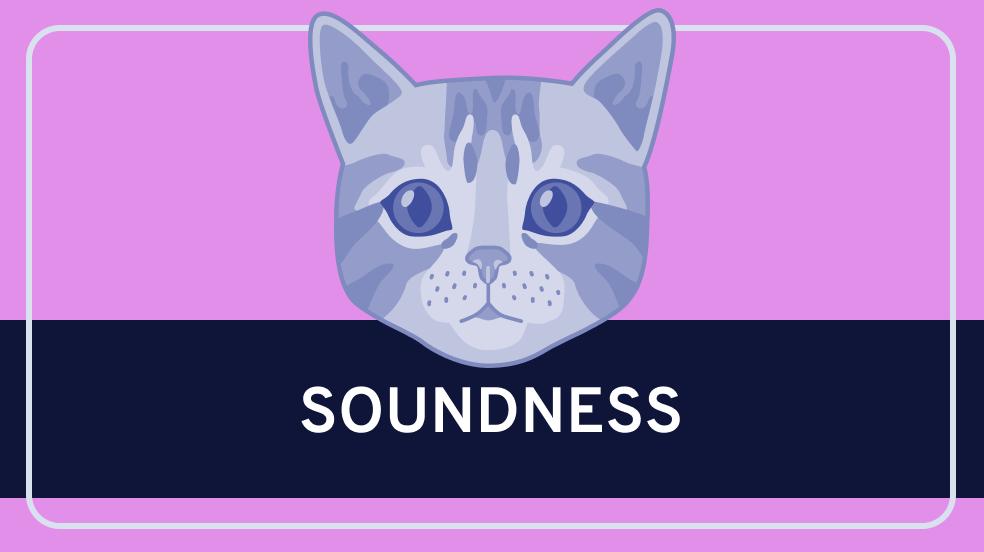 Soundness