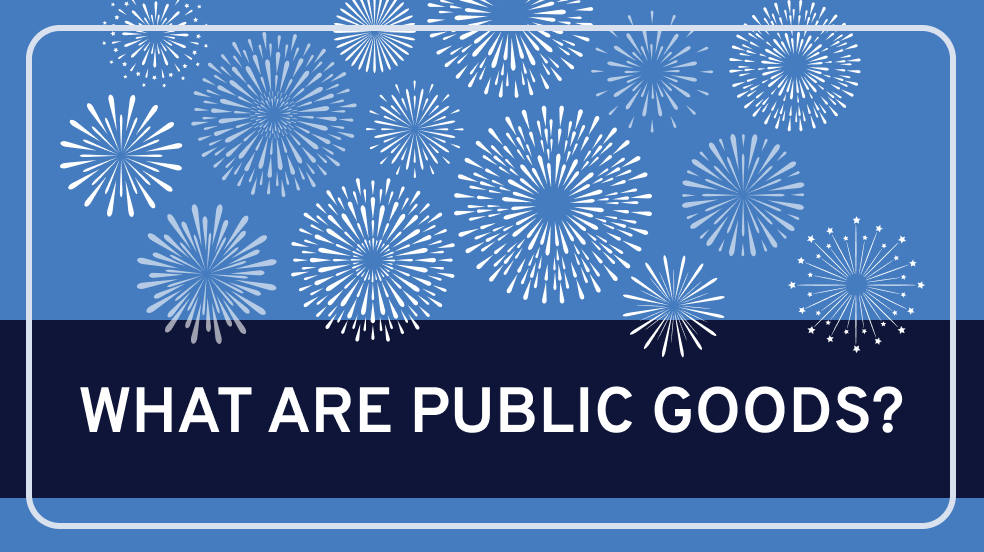 What are Public Goods?