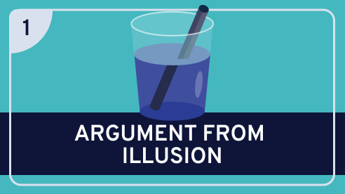 Paradoxes of Perception #1 (Argument from Illusion)