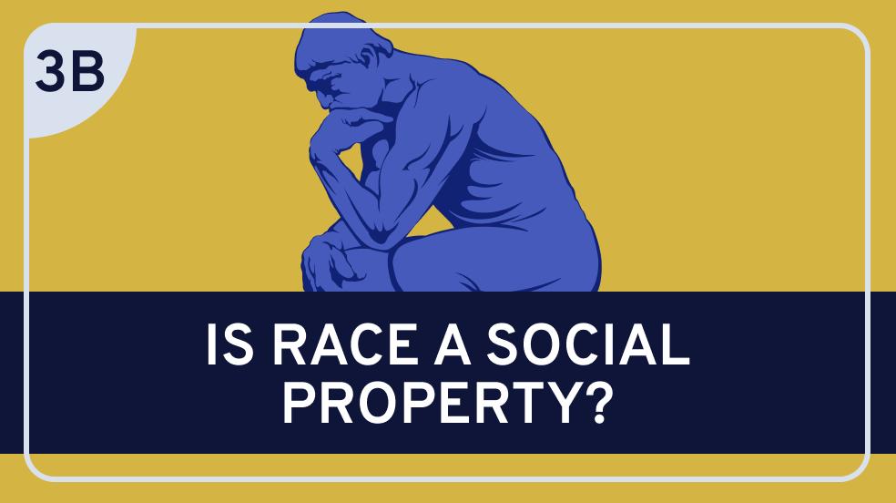 Racial Ontology: 3b. Sociohistorical Theories of Race