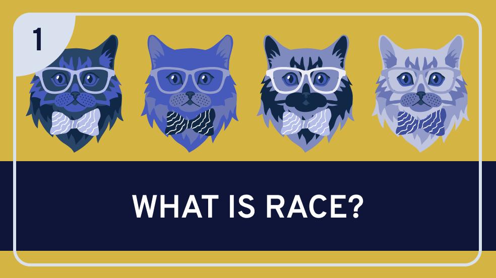 Racial Ontology: 1. Introduction